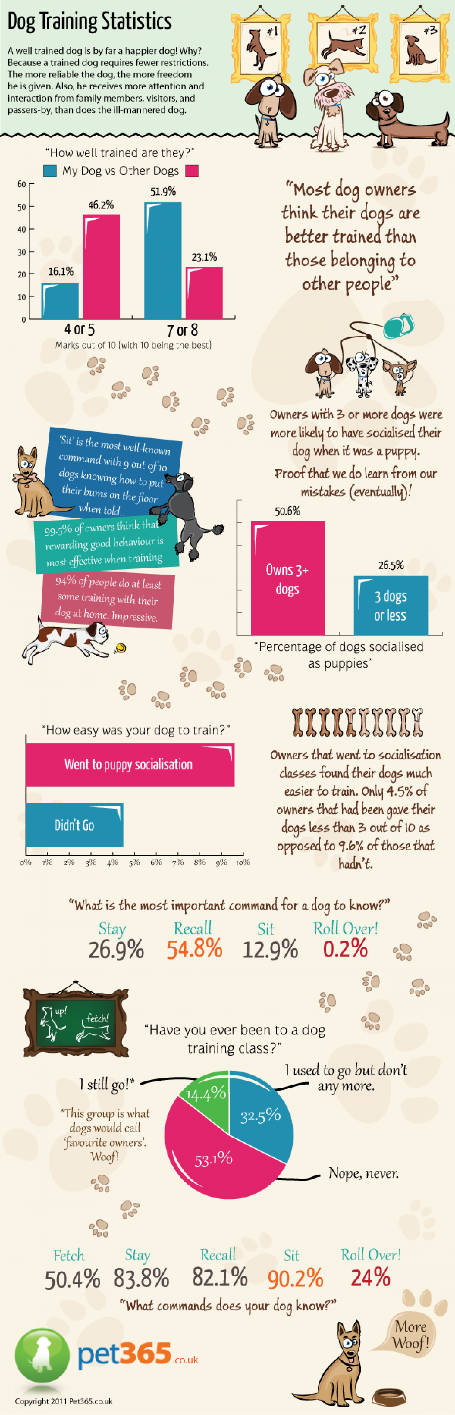 Dog Training Statistics Infographic