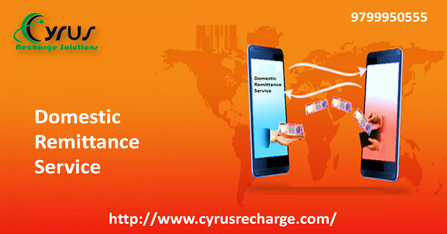 Domestic Remittance Service by Cyrus Recharge Infographic