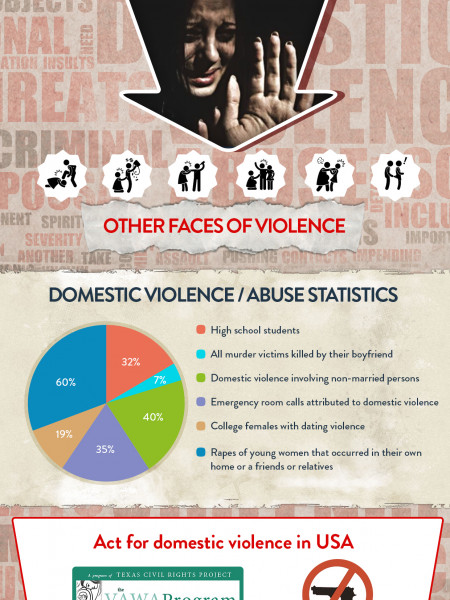 Domestic Violence in United States Infographic