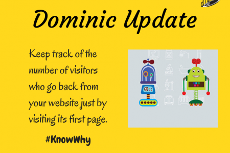 Dominic Update Infographic