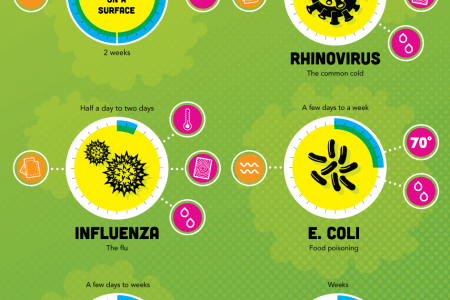 Don't Get Sick Infographic