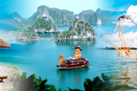 Dont miss the chance to visit a beautiful place - Vietnam  Infographic