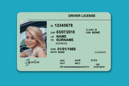 Drivers licence translation Infographic