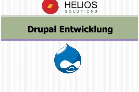 Drupal Entwicklung Infographic