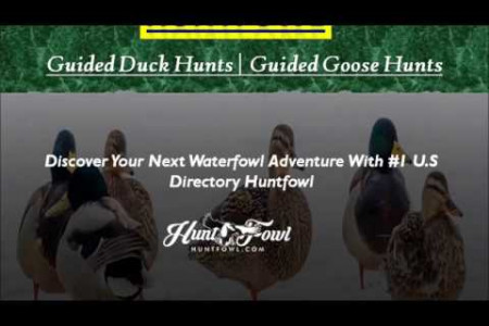 Duck Goose Hunting in Colorado Infographic