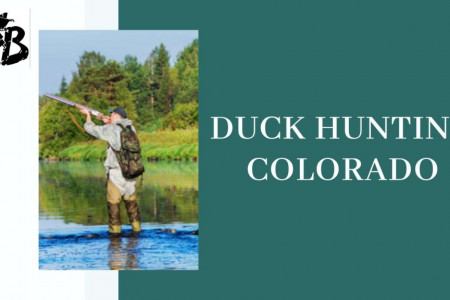 Duck Hunting Colorado Infographic