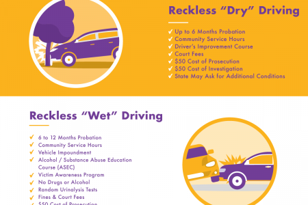 DUI Reductions in Florida Infographic