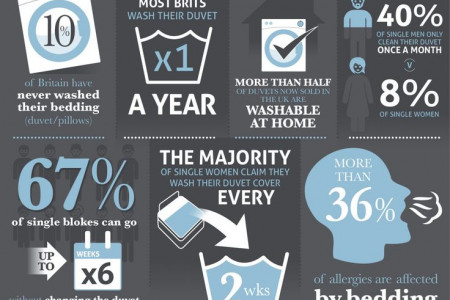 Duvets and Pillows in Numbers Infographic