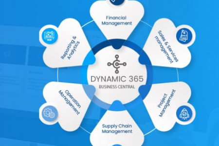 Dynamic 365 Business Central (ERP)  Infographic