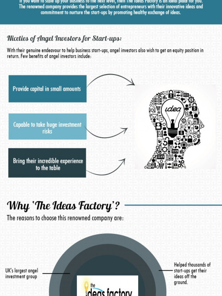 The Ideas Factory: A Platform for Start-ups to Connect with Angel Investors Infographic