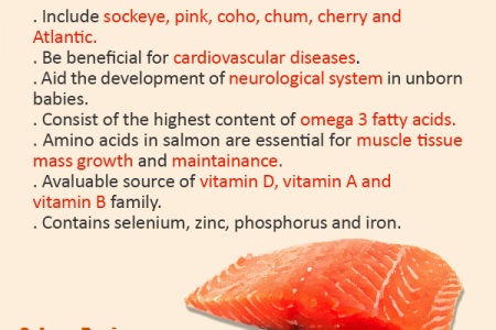 Easy Healthy Salmon Recipes Infographic