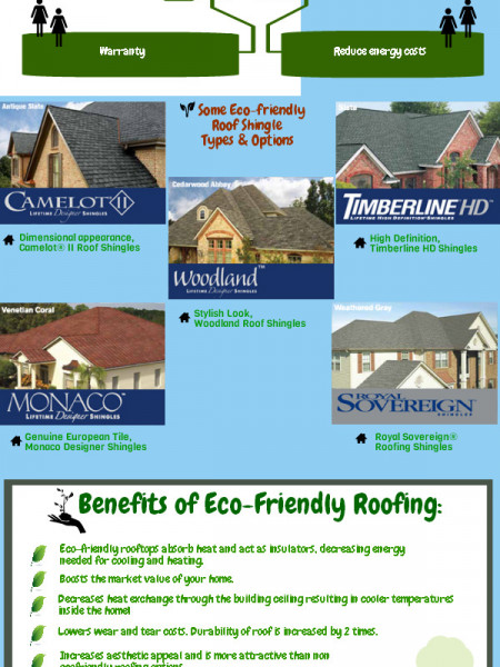 Eco-Friendly Roofing Infographics Infographic