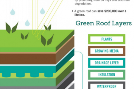 Ecohabit Green Roof & Wall Infographic