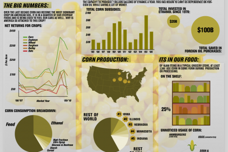 Ecornomics Infographic
