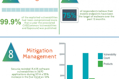 Effective Vulnerabilities Management in Simple Ten Steps Infographic