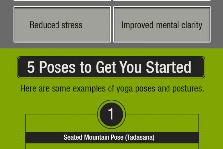 Effective Yoga for Seniors - Try Chair Yoga Programs Infographic