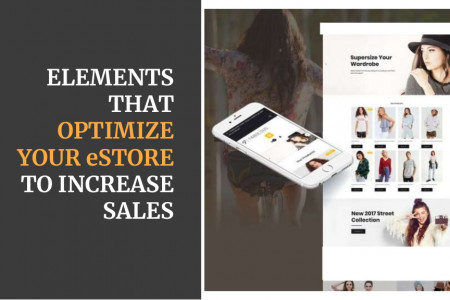 Elements That Optimize Your eStore Homepage to Increase Sales Infographic