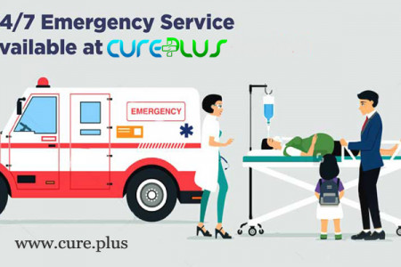 Emergency Ambulance Services Infographic
