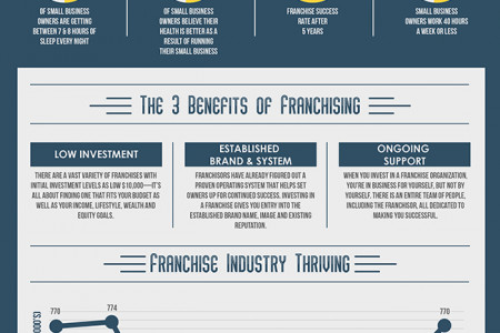 Employment vs. Business Ownership – The Franchising Advantage  Infographic