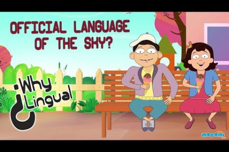 English is the official language of the sky!  Infographic