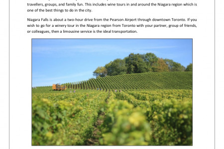 Enjoy Your Niagara Wineries Tour in a Limousine Infographic