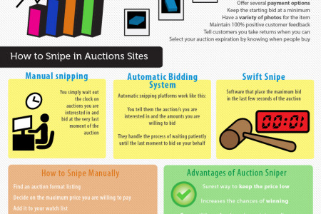 Enjoying Bargains From Online Auctions Infographic