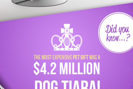 EntirelyPets Black Friday Cyber Monday Infographic