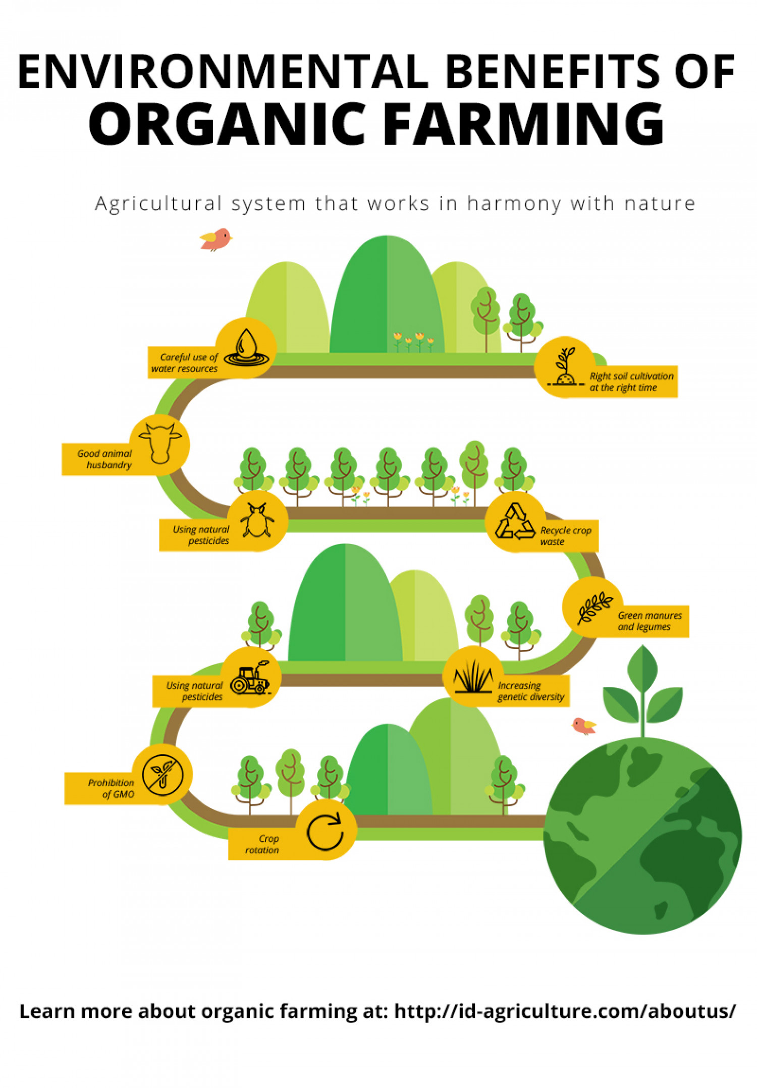 Environmental Benefits Of Organic Farming Infographic