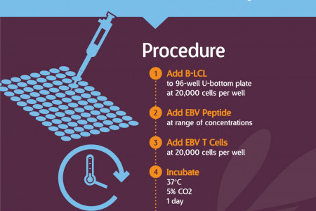 Epstein-Barr Virus (EBV) T Cell Assay Infographic