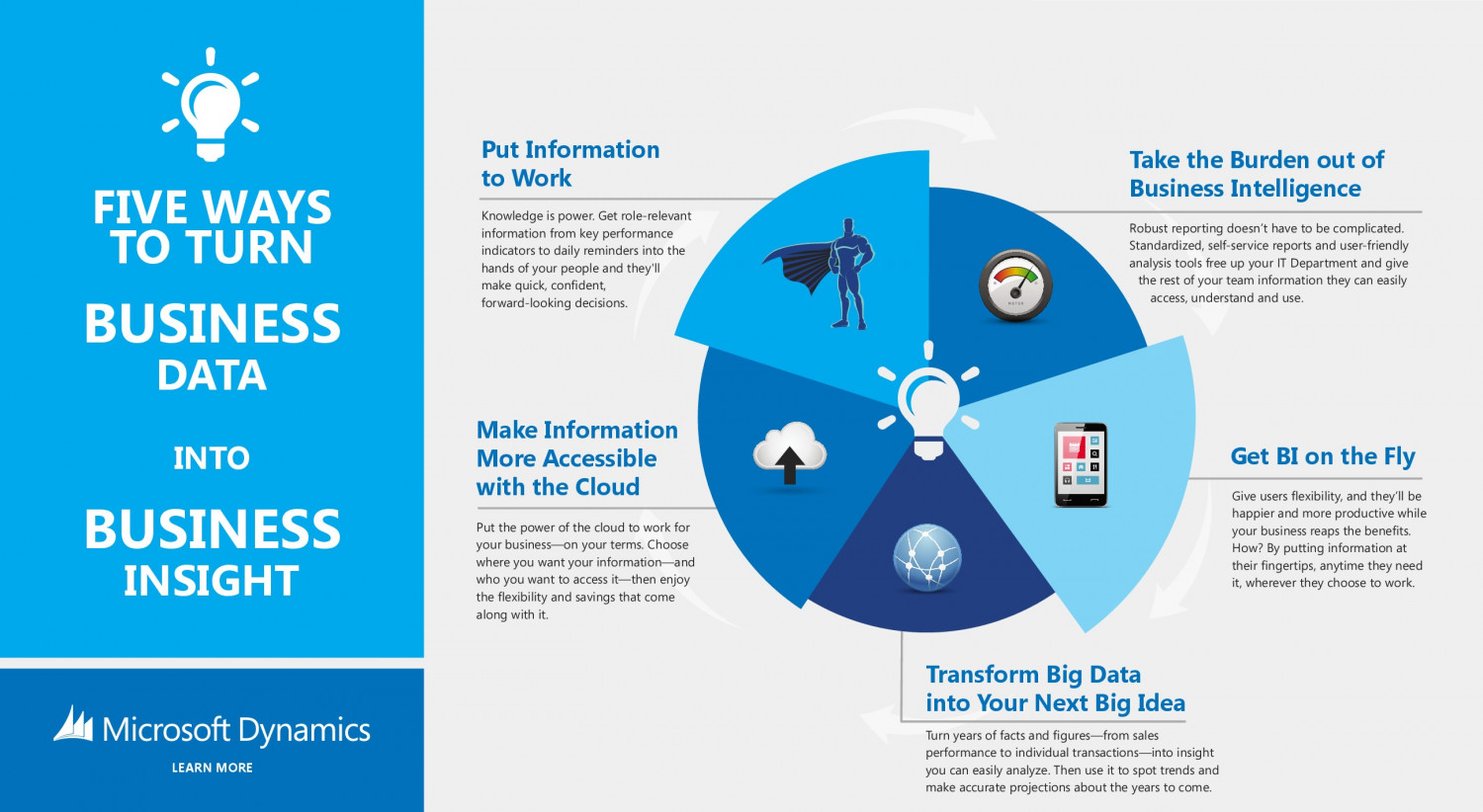 ERP Software Microsoft Dynamics Infographic