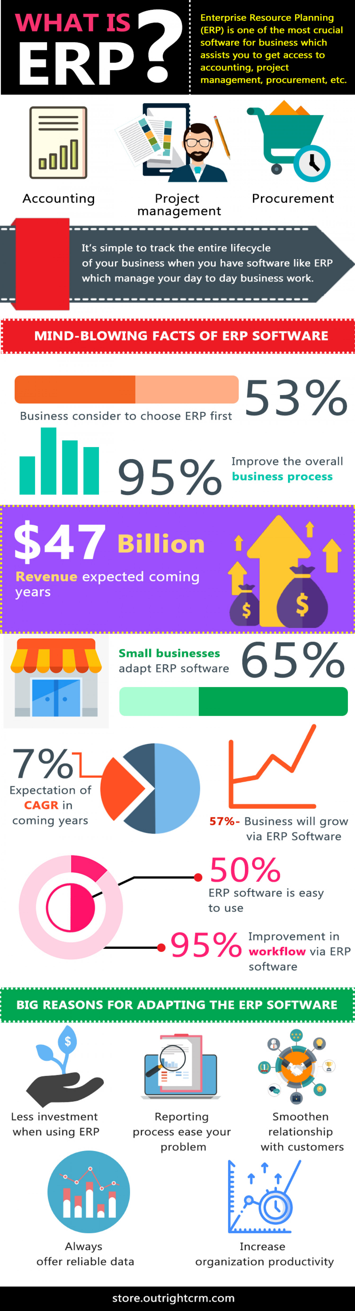 ERP Systems Benefits and Importance of ERP Infographic
