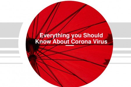 Everything you Should Know About Corona Infographic
