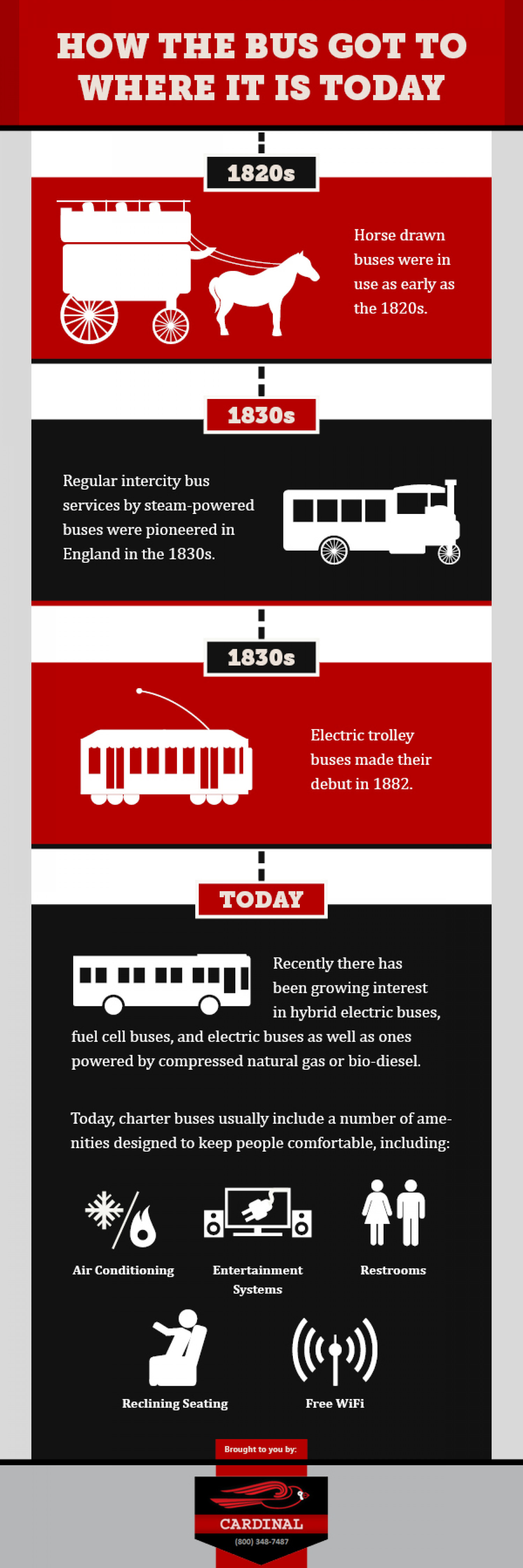 How the Bus Got to Where it is Today Infographic