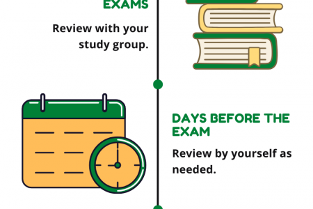 Exam Preparation Timeline Infographic
