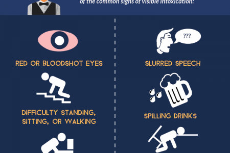Examples of Visible Intoxication Infographic