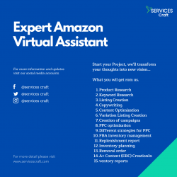 Expert Amazon Virtual Assistant to Expand Your Ecommerce Business