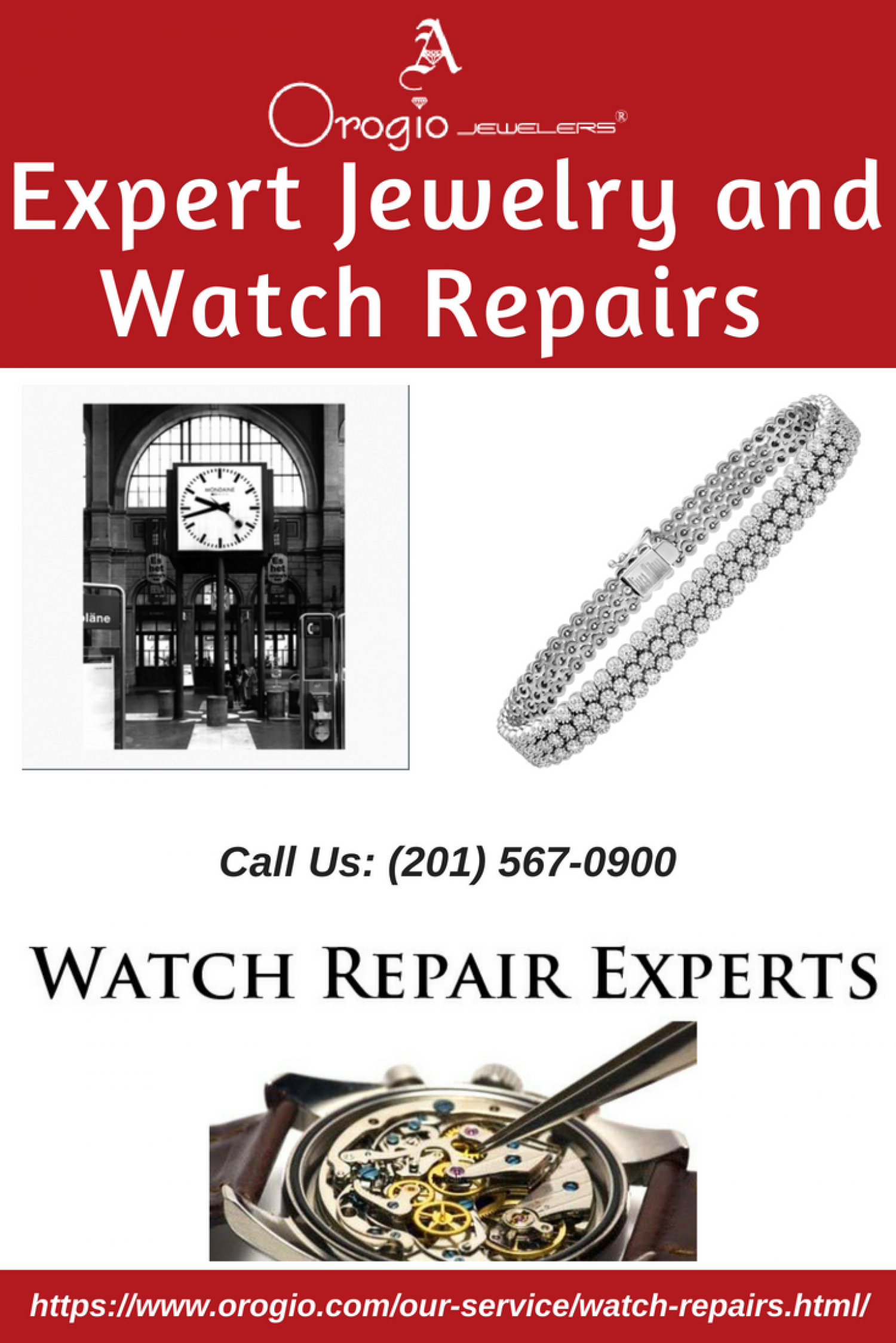 Expert Jewelry and Watch Repairs  Infographic