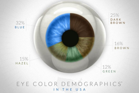 Eye Color Demographics In The USA Infographic