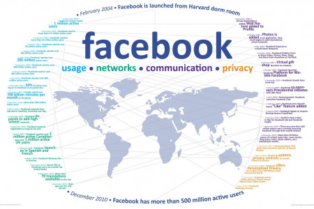 Facebook: Usage, Network, Communication, Privacy Infographic