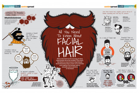 Facial Hair Infographic
