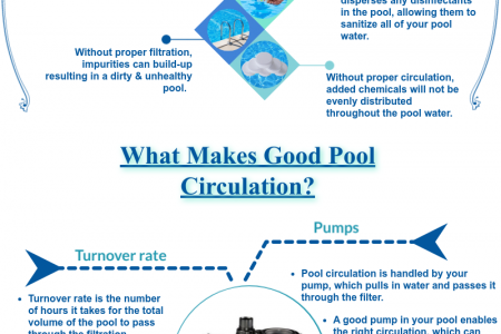 Factors Responsible for Good Circulation in Your Swimming Pool Infographic