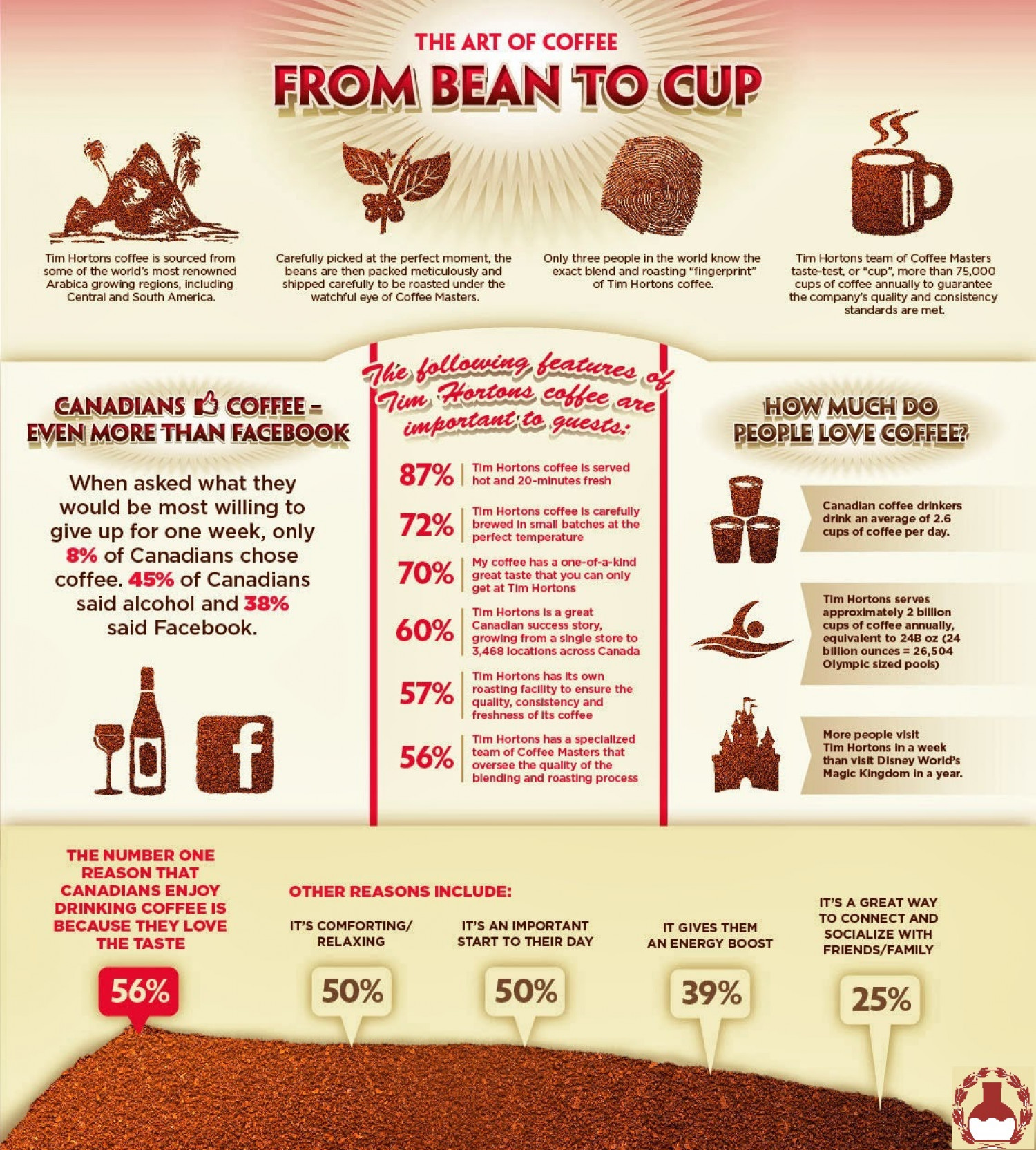 Facts About Coffee Infographic