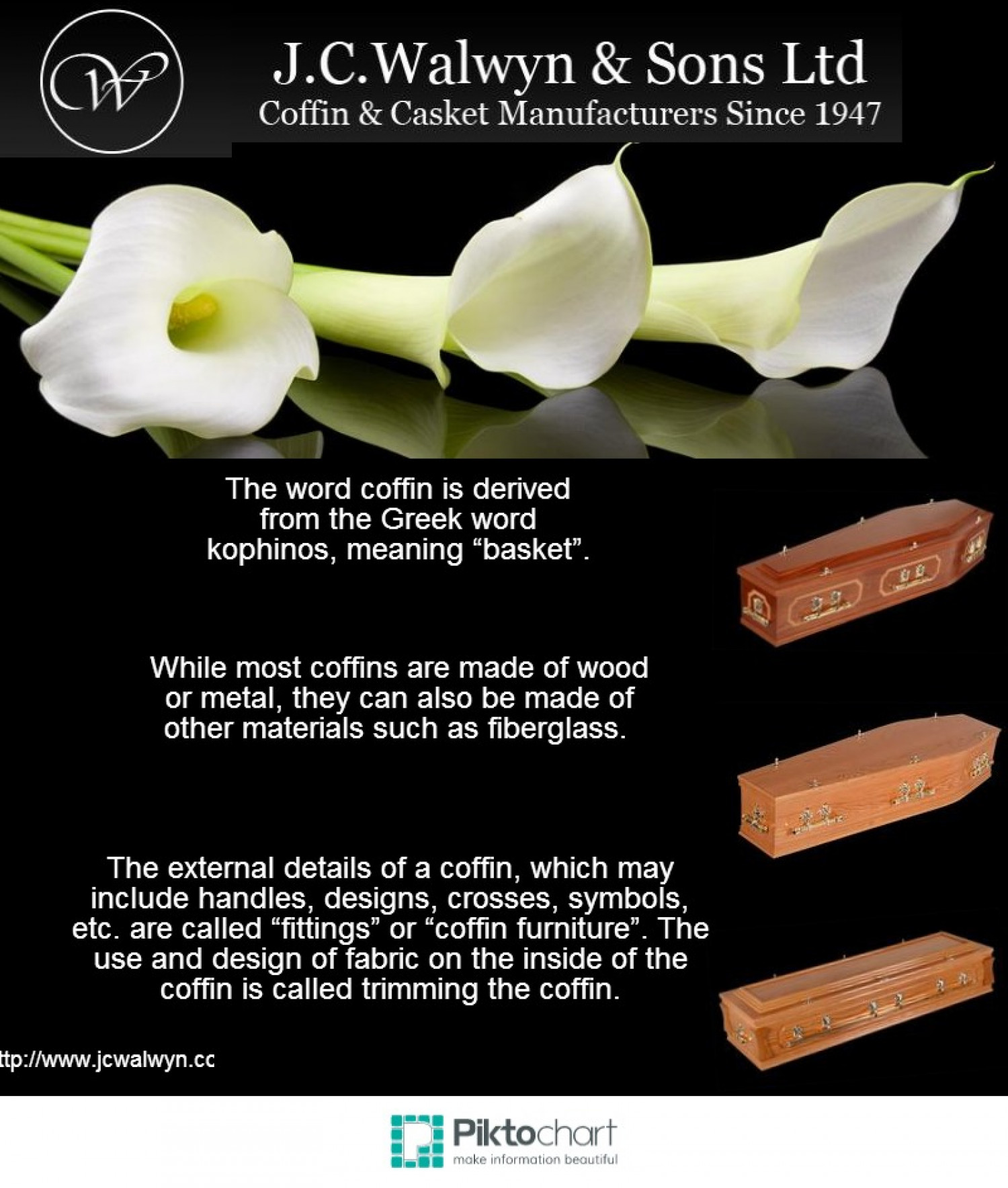 Facts about coffins Infographic