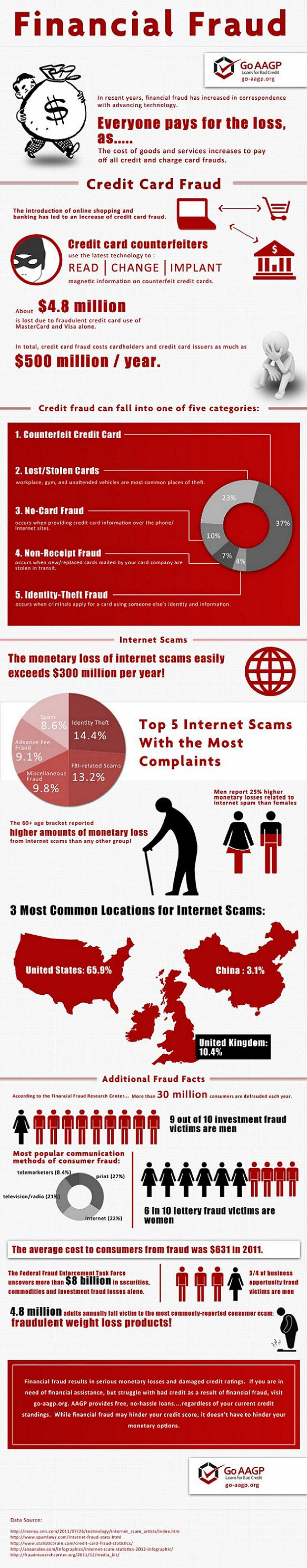 Financial Fraud  Infographic
