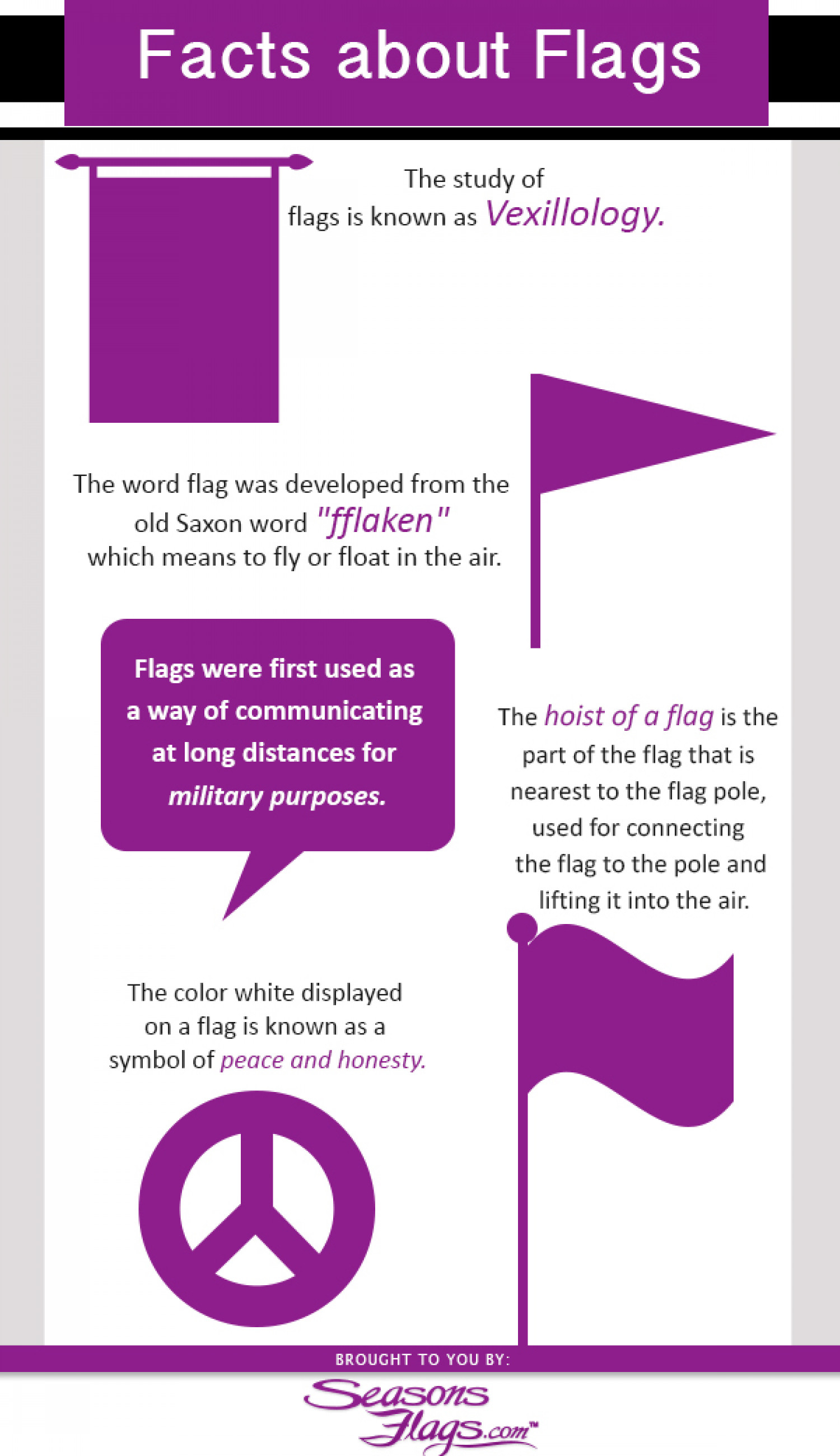 Facts About Flags Infographic