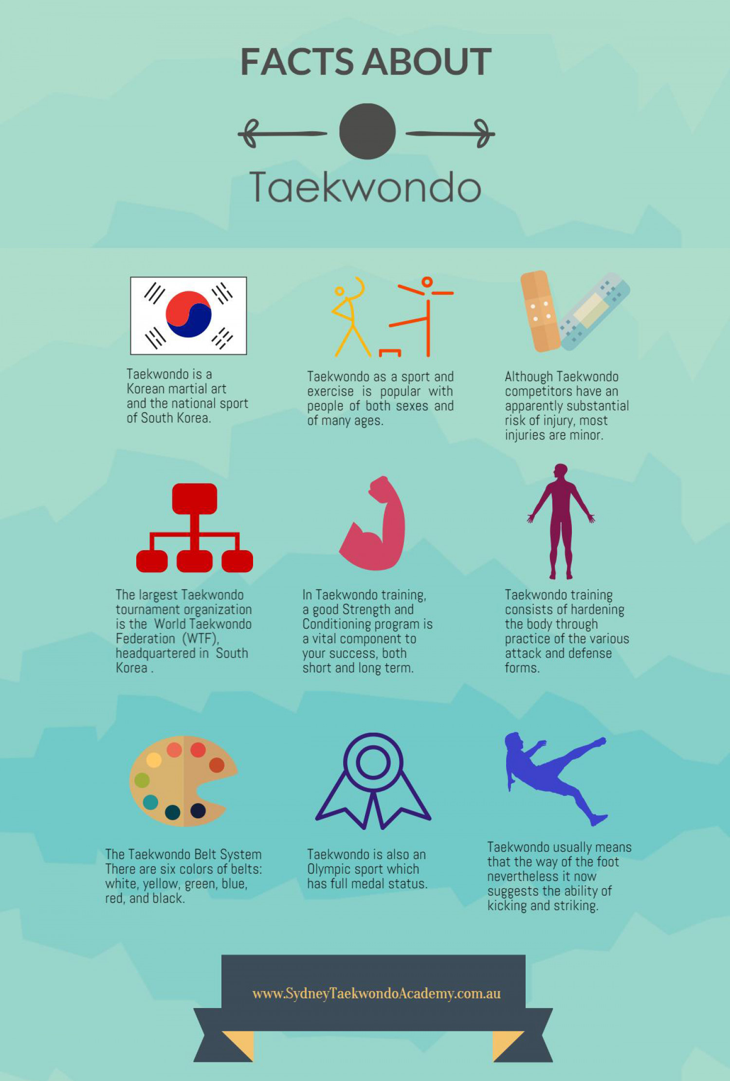 Facts About Taekwondo Infographic