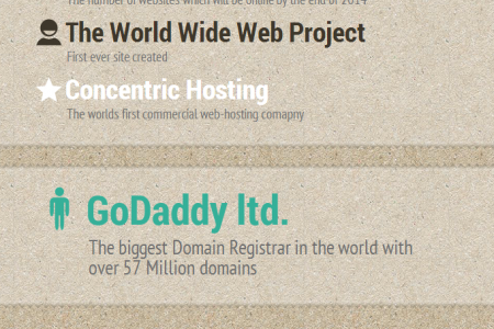 Facts, History of Internet And Web-hosting Infographic