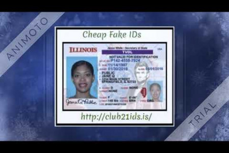 Fake US Driving License Infographic