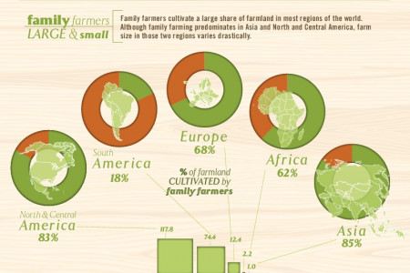 Family Farmers: Large and Small Infographic