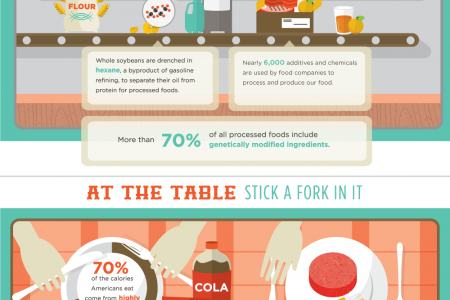 Farm to Fork: Our Toxic Food System Infographic